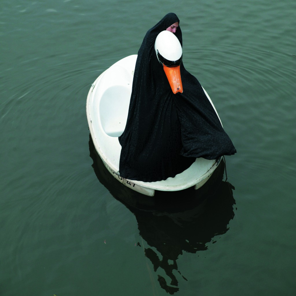 Swanrider, Parastou Forouhar, 2004, Courtesy Pi Artworks Istanbul/London and the artist.