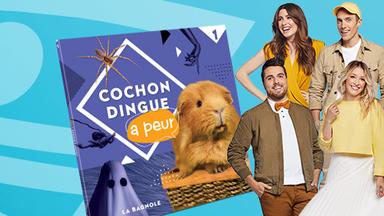 Viens prendre une photo avec les animateurs de Cochon Dingue!