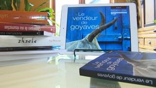 Le vendeur de goyaves   Un roman numérique immersif