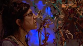 La polyphonie des sens d'Isabelle Clermont