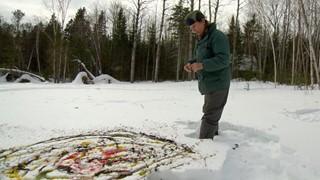 Yves Gonthier | Pigments organiques sur toile de neige