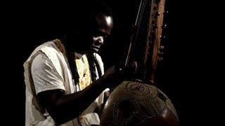 Nuits d'Afrique | La kora de Zal Sissokho