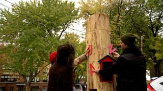Un arbre à livres pousse au Saguenay