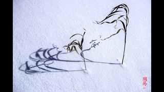 Yvon Jolivet | Chercheur de nature