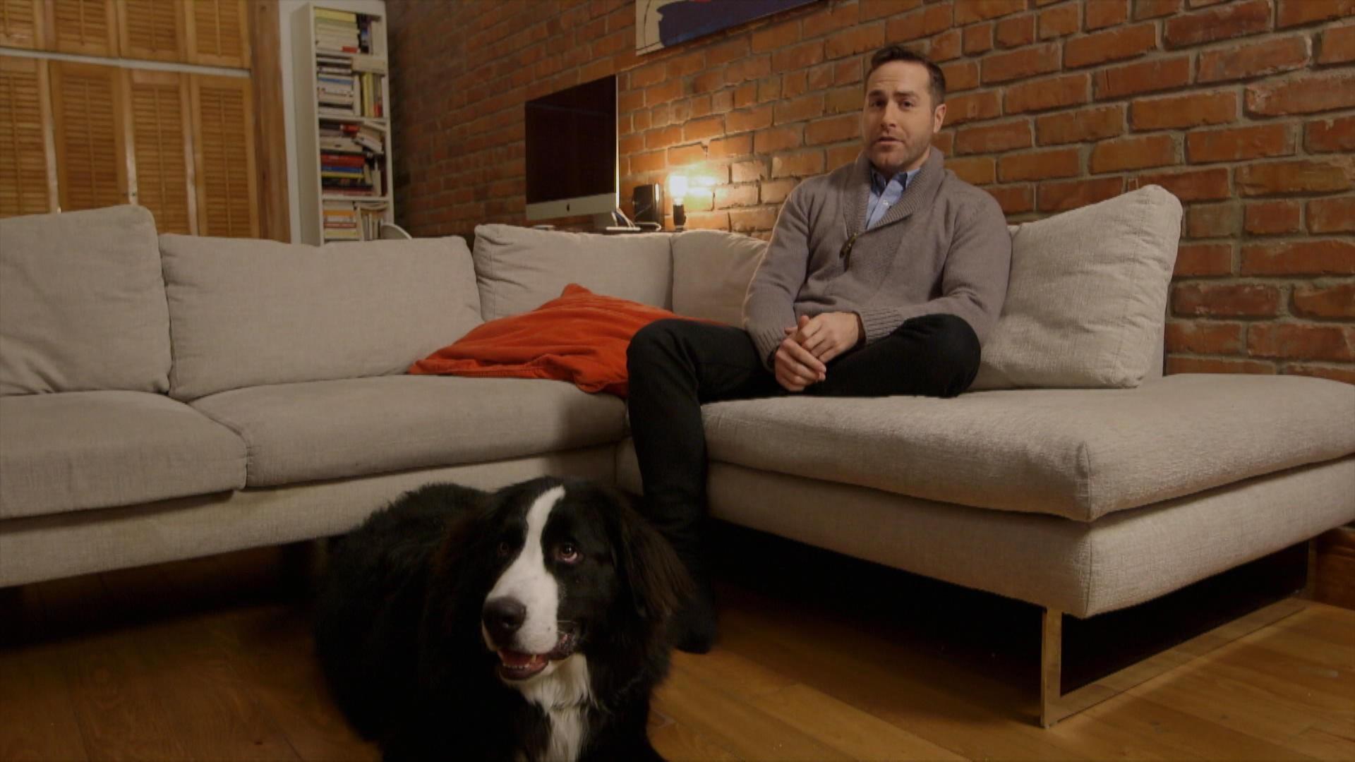 Co ts reli s l 39 adoption d 39 un chien a vaut le co t for Cout d un chien assis