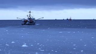 Capitaines des hauts-fonds   Regard humain sur la pêche en haute mer