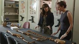 Marianne au labo : que révèlent les ossements des premiers Montréalais?