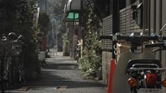 L'Atelier Pierre Thibault | Japon : entre nature et densité