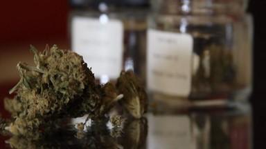 Comment le cannabis permet-il de diminuer la douleur?