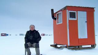 Claude Guérin et ses monumentales cabanes