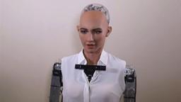 Sophia, la dernière venue dans le monde des robots à apparence humaine.