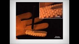 Des gants de travail qui imitent les écailles de poissons