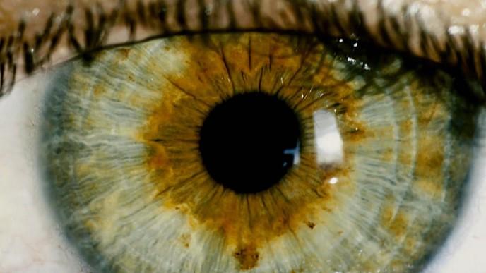 L'œil humain, imparfait?