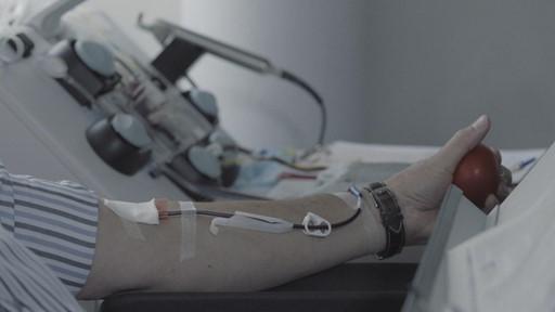 Don de sang rémunéré : marchandisation du corps ou source de revenu?