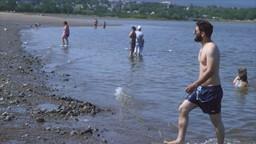 Se baigner sans crainte dans le Saint-Laurent