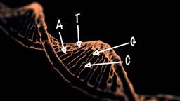 50 ans de génétique